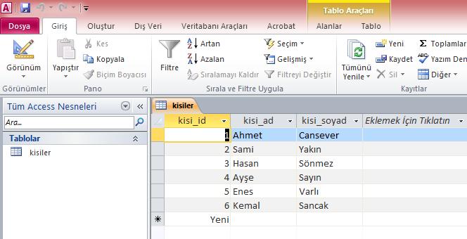 datareader_veri