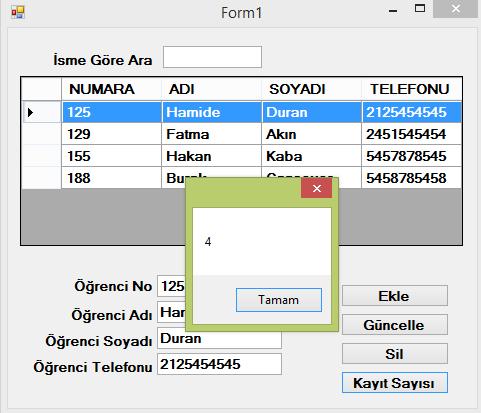 kayit_sayisi2